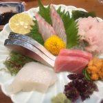 熊本名物 馬肉料理と魚料理を有名店でたらふく食べてきました(むつ五郎 編)
