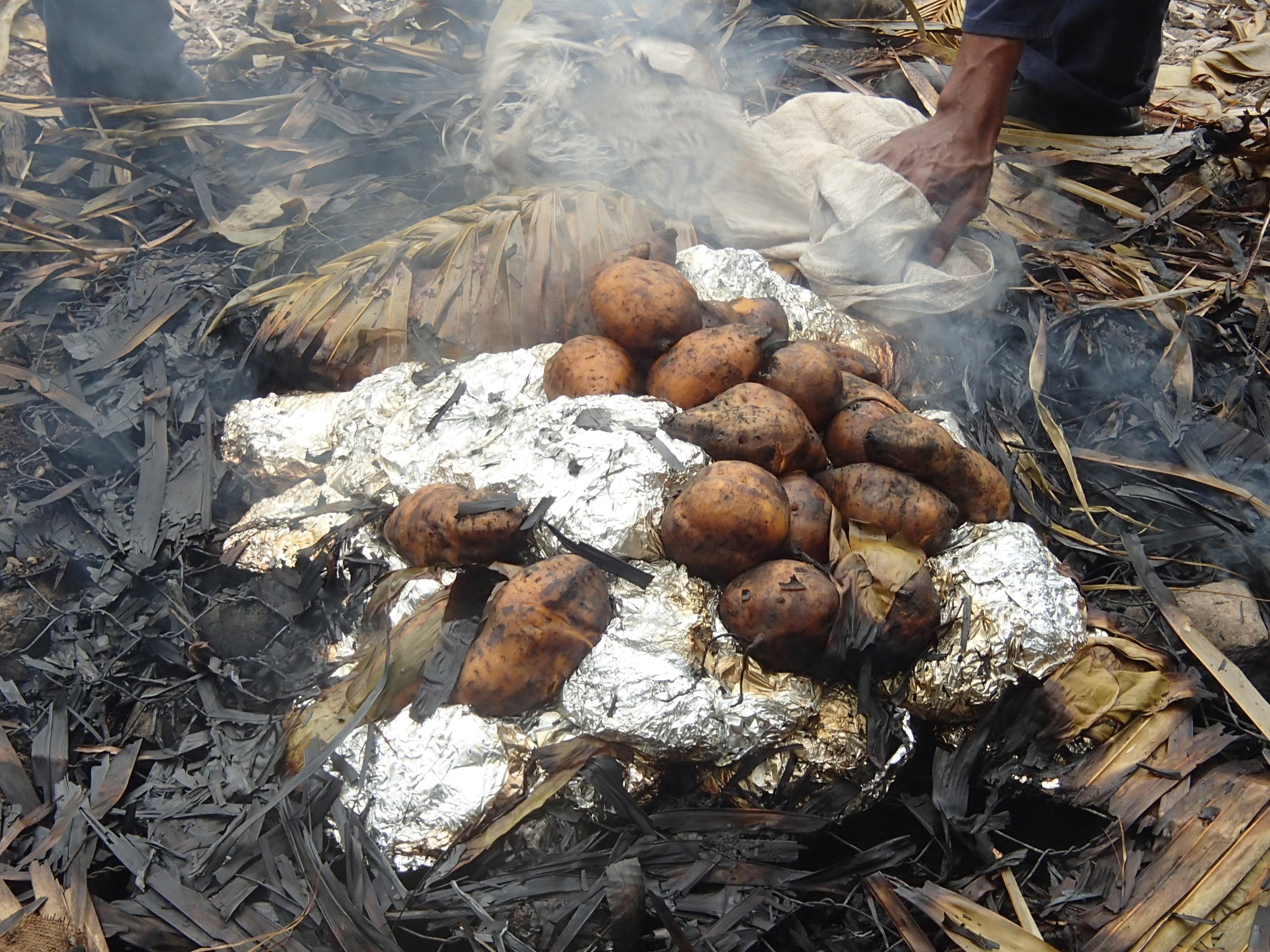 フィジー旅行記 11 フィジーの伝統料理「LOVO」