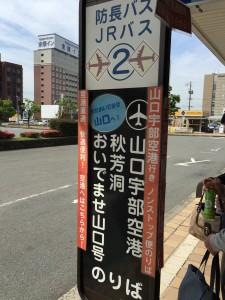IMG_1284-0.jpg